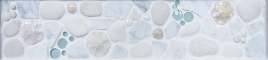 sand dollars seaspray border